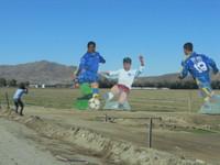 Joe_noriko_uedasan_001